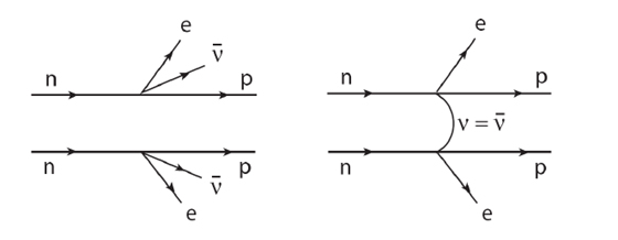 The observation of neutrinoless double beta decay, shown on the right diagram, would prove that the neutrino is its own antiparticle. The experimental prospects are promising.