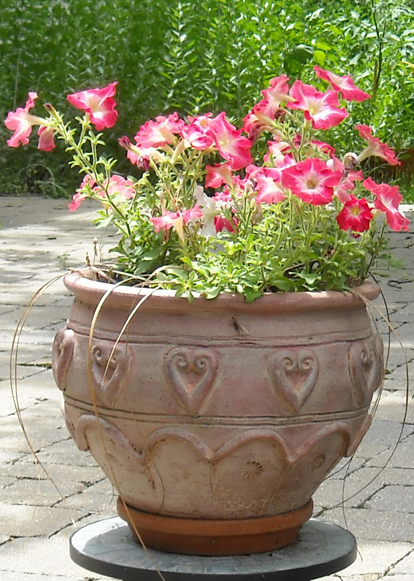 What could be the relationship between a bowl of petunias and the ILC {i}Technical Design Report{/i}? Image: ILC