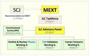 Figure 1: Schematic of the MEXT-coordinated advisory and working groups.