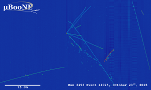 First neutrino event candidates identified by MicoBooNE. The image shows the raw data with some low-level processing and represent the input to the hit finding and particle flow reconstruction (i.e. pattern recognition) phases.